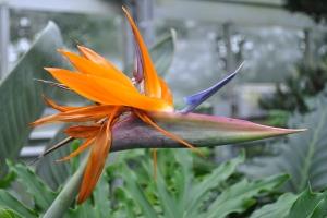 ...and Botanical Gardens.